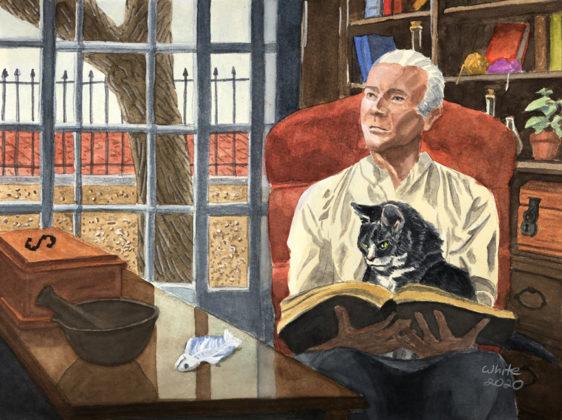 Fantasy Illustration of Wizard Cat